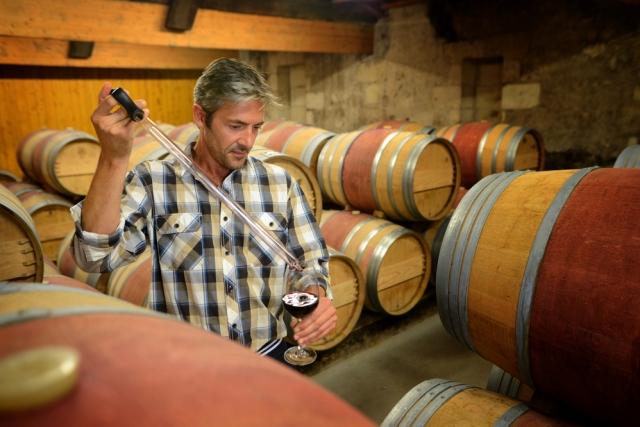 Corso Sommelier lezione 01-03_enologia-prod-vino AIS Piemonte