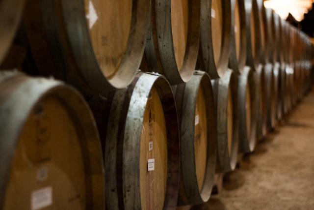 Corso Sommelier lezione 01-14_azienda-vinicola AIS Piemonte