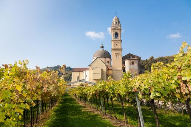 Corso Sommelier lezione 02_04_veneto AIS Piemonte